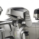cropped-aibo-header1.png