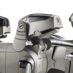 cropped-aibo-header211.png