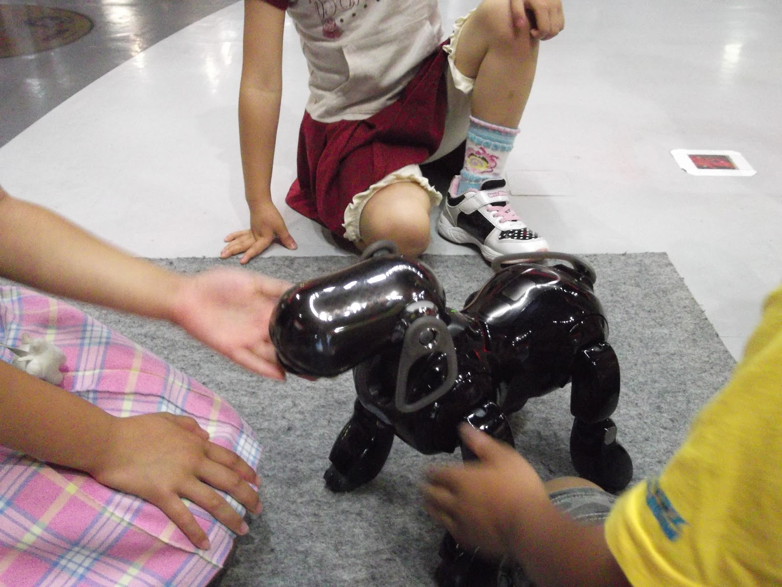 Aibo Owners Feel Abandoned